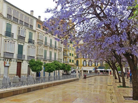 Malaga Spain Visitor's Guide